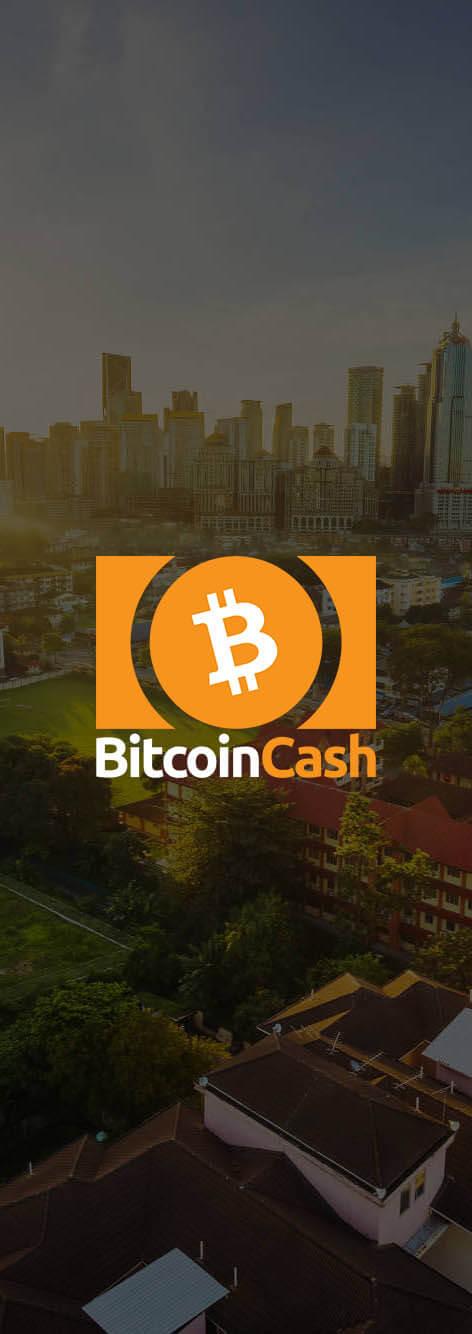 Криптовалюта Bitcoin Cash